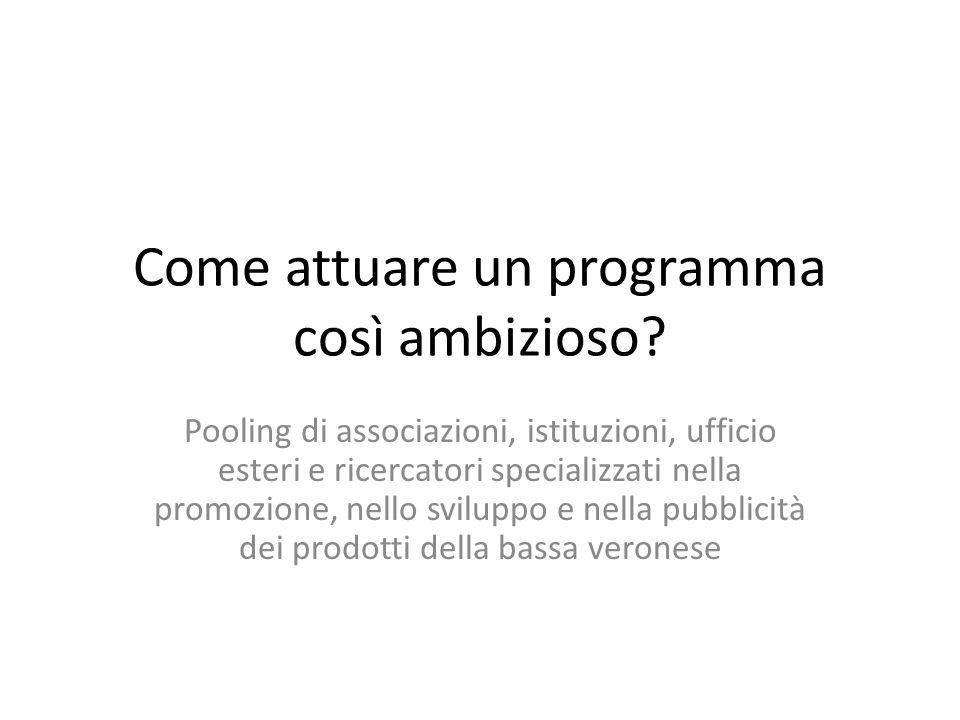 Come attuare un programma così ambizioso? Pooling di associazioni, istituzioni, ufficio esteri e ricercatori specializzati nella promozione, nello svi
