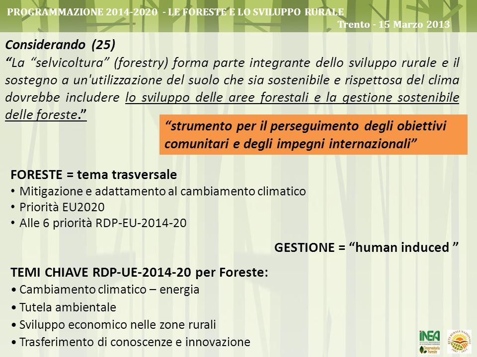 strumento per il perseguimento degli obiettivi comunitari e degli impegni internazionali Considerando (25) La selvicoltura (forestry) forma parte inte