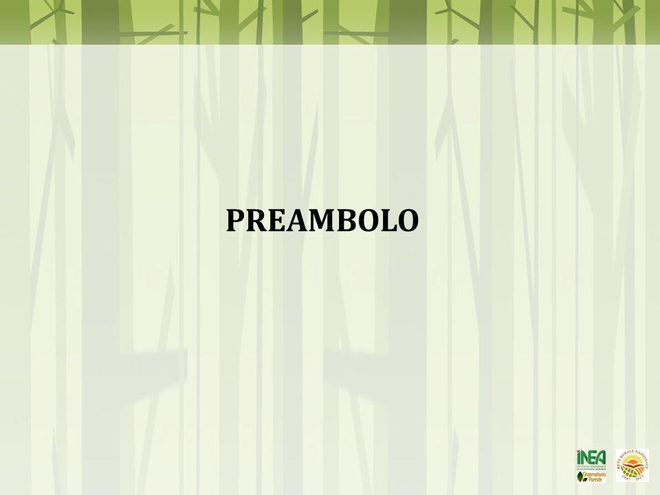 PREAMBOLO