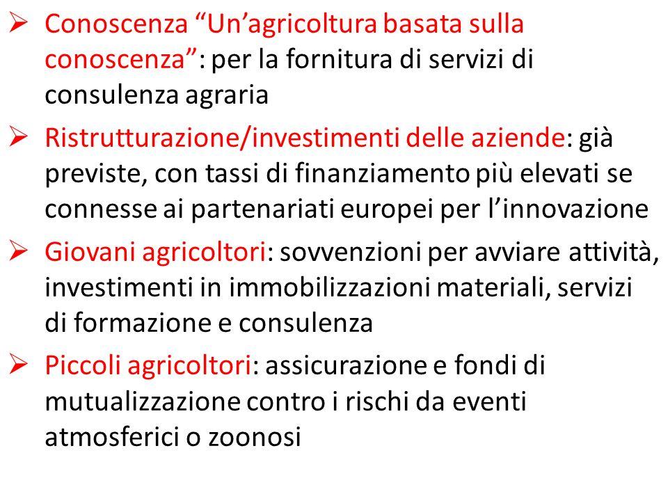 Conoscenza Unagricoltura basata sulla conoscenza: per la fornitura di servizi di consulenza agraria Ristrutturazione/investimenti delle aziende: già p