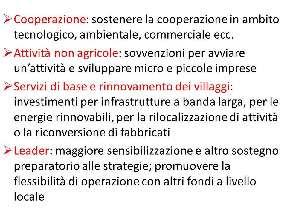 Cooperazione: sostenere la cooperazione in ambito tecnologico, ambientale, commerciale ecc. Attività non agricole: sovvenzioni per avviare unattività