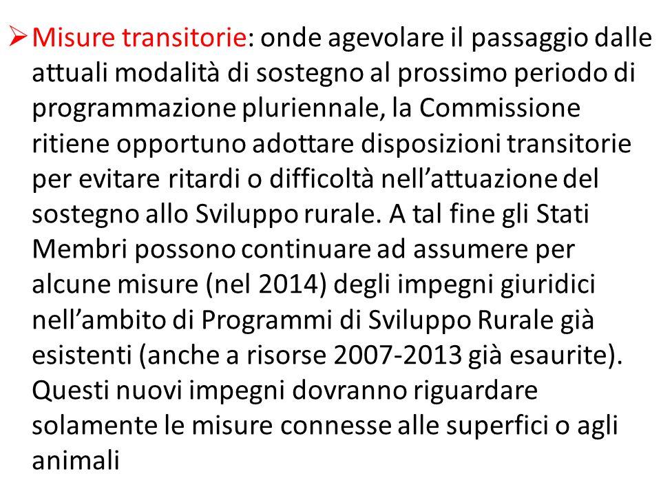 Misure transitorie: onde agevolare il passaggio dalle attuali modalità di sostegno al prossimo periodo di programmazione pluriennale, la Commissione r