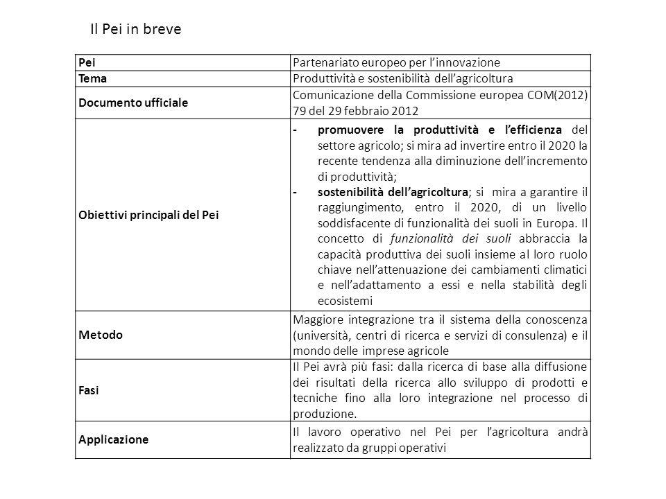 PeiPartenariato europeo per linnovazione TemaProduttività e sostenibilità dellagricoltura Documento ufficiale Comunicazione della Commissione europea