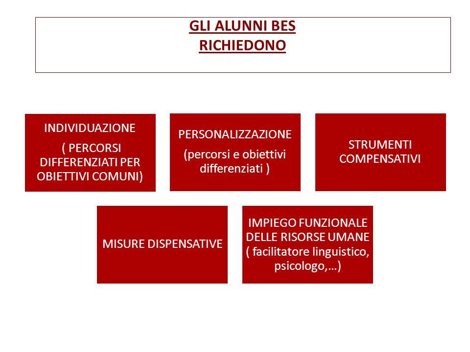 GLI ALUNNI BES RICHIEDONO INDIVIDUAZIONE ( PERCORSI DIFFERENZIATI PER OBIETTIVI COMUNI) PERSONALIZZAZIONE (percorsi e obiettivi differenziati ) STRUME