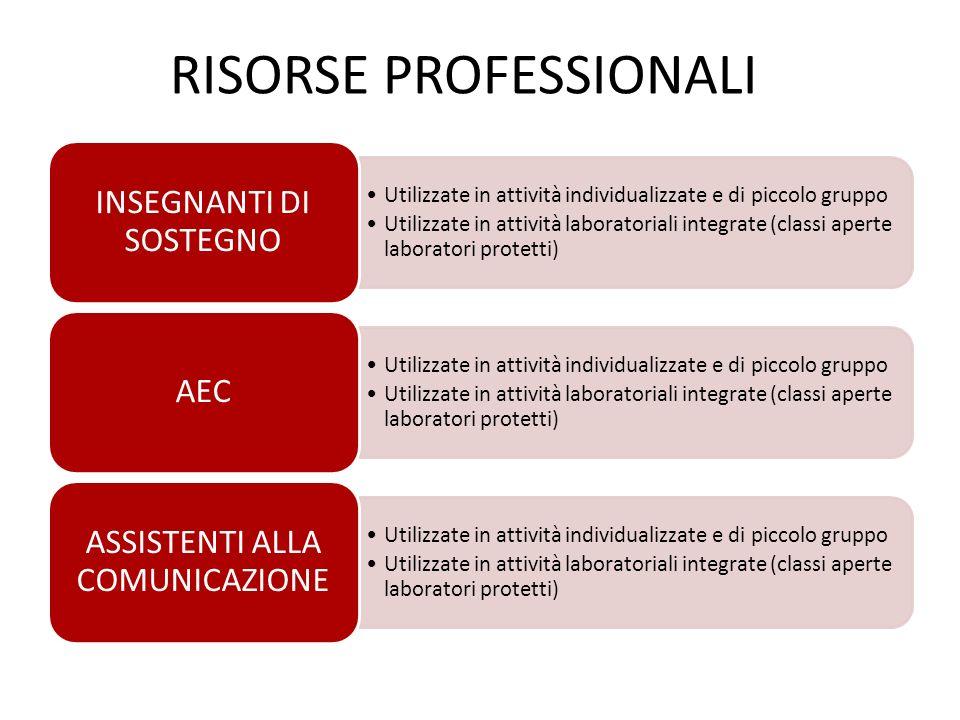 RISORSE PROFESSIONALI Utilizzate in attività individualizzate e di piccolo gruppo Utilizzate in attività laboratoriali integrate (classi aperte labora