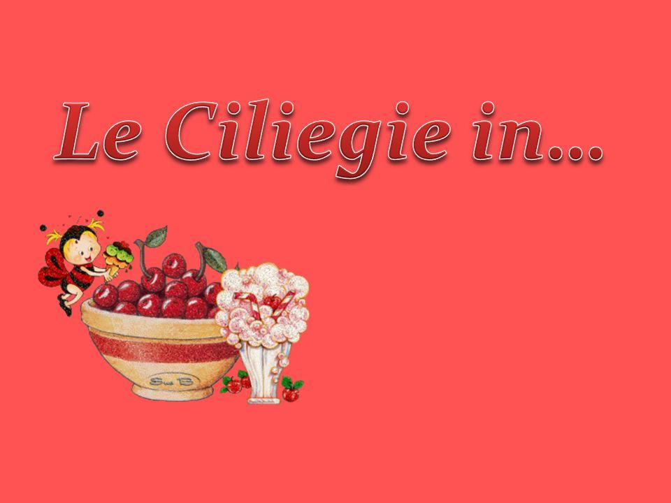 Il buon giugno ha maturato, coi suoi raggi d oro puro, tutte rosse le ciliegie tra il fogliame verde scuro.