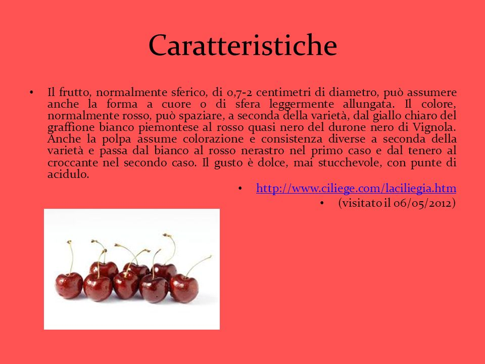 Caratteristiche Il frutto, normalmente sferico, di 0,7-2 centimetri di diametro, può assumere anche la forma a cuore o di sfera leggermente allungata.