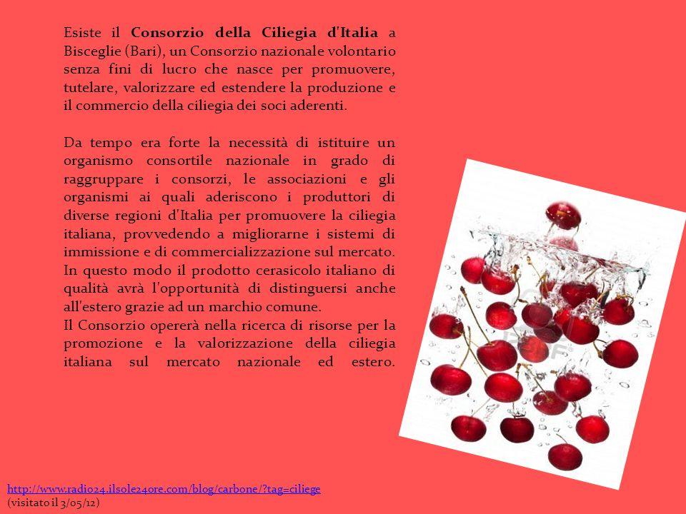 Esiste il Consorzio della Ciliegia d'Italia a Bisceglie (Bari), un Consorzio nazionale volontario senza fini di lucro che nasce per promuovere, tutela