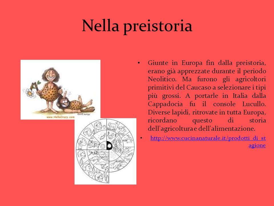 Nella preistoria Giunte in Europa fin dalla preistoria, erano già apprezzate durante il periodo Neolitico. Ma furono gli agricoltori primitivi del Cau