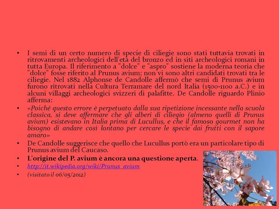 http://angolotesti.leonardo.it http://www.poesie.reportonline.it/Poesie-di-Giugno/la-canzone-delle- ciliegie-di-r-paccarie.htmlhttp://www.poesie.reportonline.it/Poesie-di-Giugno/la-canzone-delle- ciliegie-di-r-paccarie.html http://semialvento.forumfree.it/?t=3882148 http://essenze.altervista.org/viewtopic.php?f=3&t=334 http://www.lospaziobianco.it/17691-fumiyo-kono-hiroshima-nel-paese-dei- fiori-ciliegiohttp://www.lospaziobianco.it/17691-fumiyo-kono-hiroshima-nel-paese-dei- fiori-ciliegio http://it.paperblog.com/rossociliegia-il-tempo-delle-ciliegie-428500