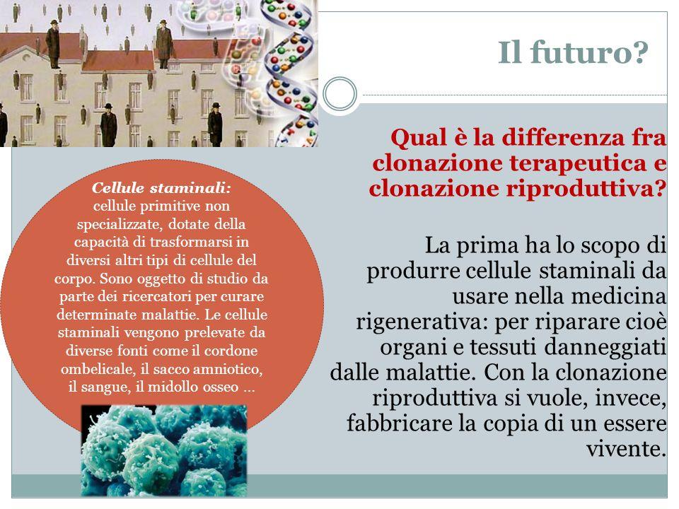 Il futuro? Qual è la differenza fra clonazione terapeutica e clonazione riproduttiva? La prima ha lo scopo di produrre cellule staminali da usare nell