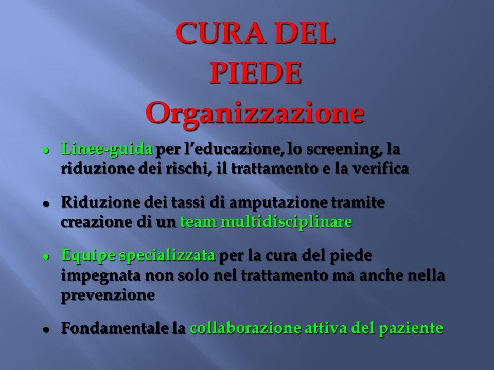 CURA DEL PIEDE Organizzazione Linee-guida per leducazione, lo screening, la riduzione dei rischi, il trattamento e la verifica Linee-guida per leducaz