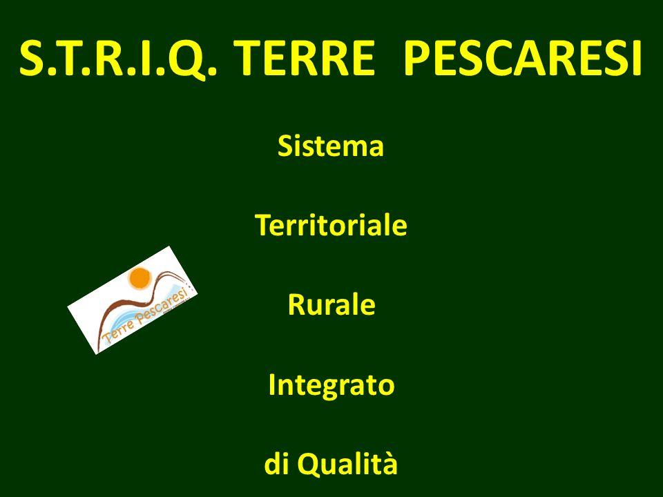 S.T.R.I.Q. TERRE PESCARESI Sistema Territoriale Rurale Integrato di Qualità