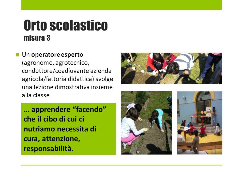 Orto scolastico misura 3 Un operatore esperto (agronomo, agrotecnico, conduttore/coadiuvante azienda agricola/fattoria didattica) svolge una lezione d