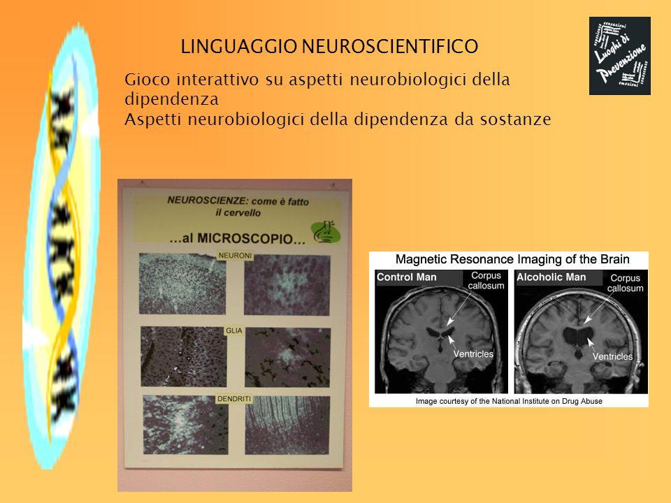 Gioco interattivo su aspetti neurobiologici della dipendenza Aspetti neurobiologici della dipendenza da sostanze LINGUAGGIO NEUROSCIENTIFICO