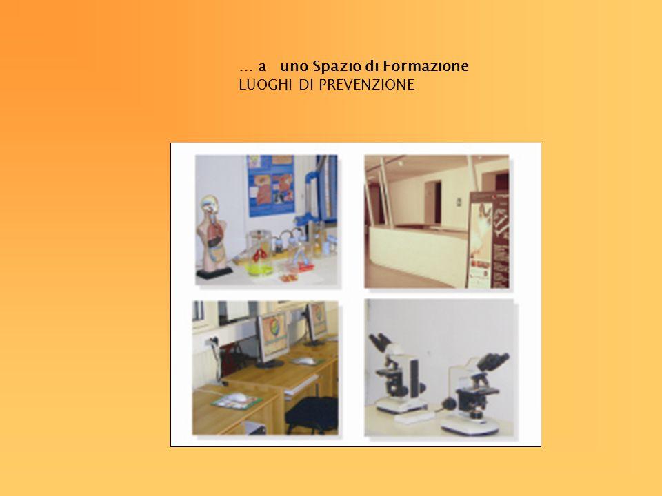 LA STORIA DI LUOGHI DI PREVENZIONE 2003/2004: Le vie del fumo: Rassegna itinerante a Reggio Emilia, Rimini, Ravenna, Bologna, Scandiano, Città della Scienza di Napoli.