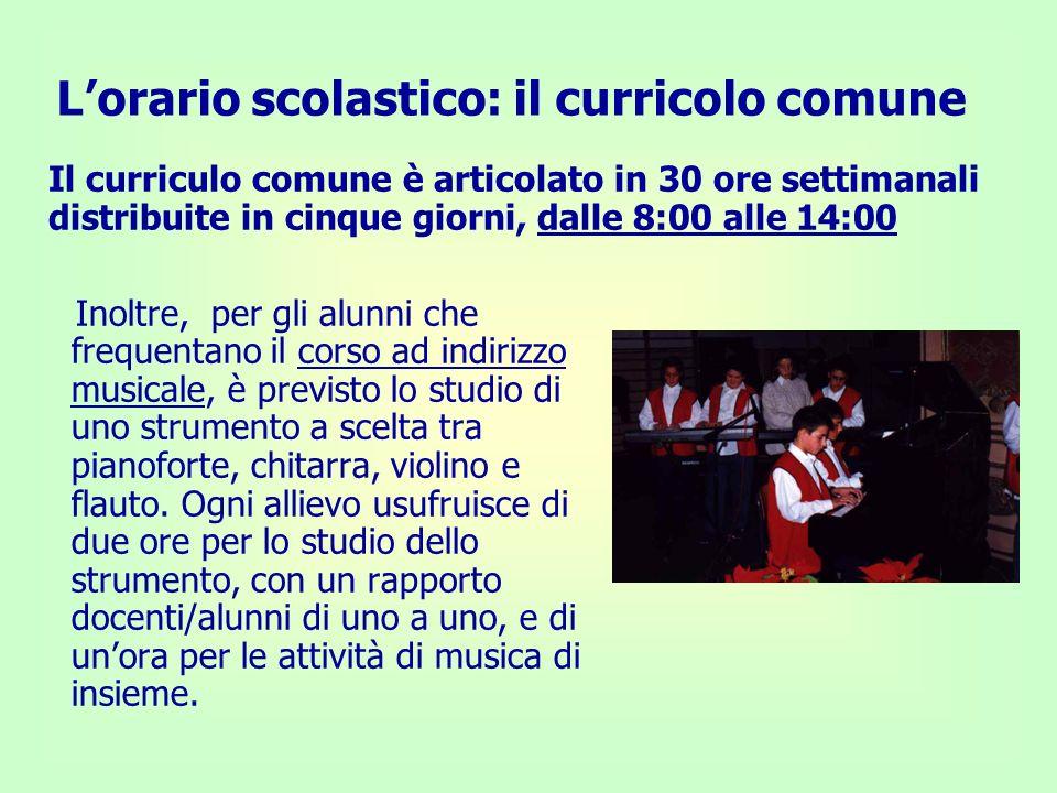 Inoltre, per gli alunni che frequentano il corso ad indirizzo musicale, è previsto lo studio di uno strumento a scelta tra pianoforte, chitarra, violi