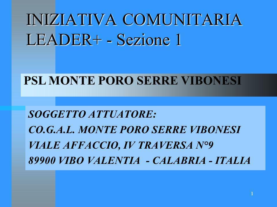1 INIZIATIVA COMUNITARIA LEADER+ - Sezione 1 SOGGETTO ATTUATORE: CO.G.A.L.