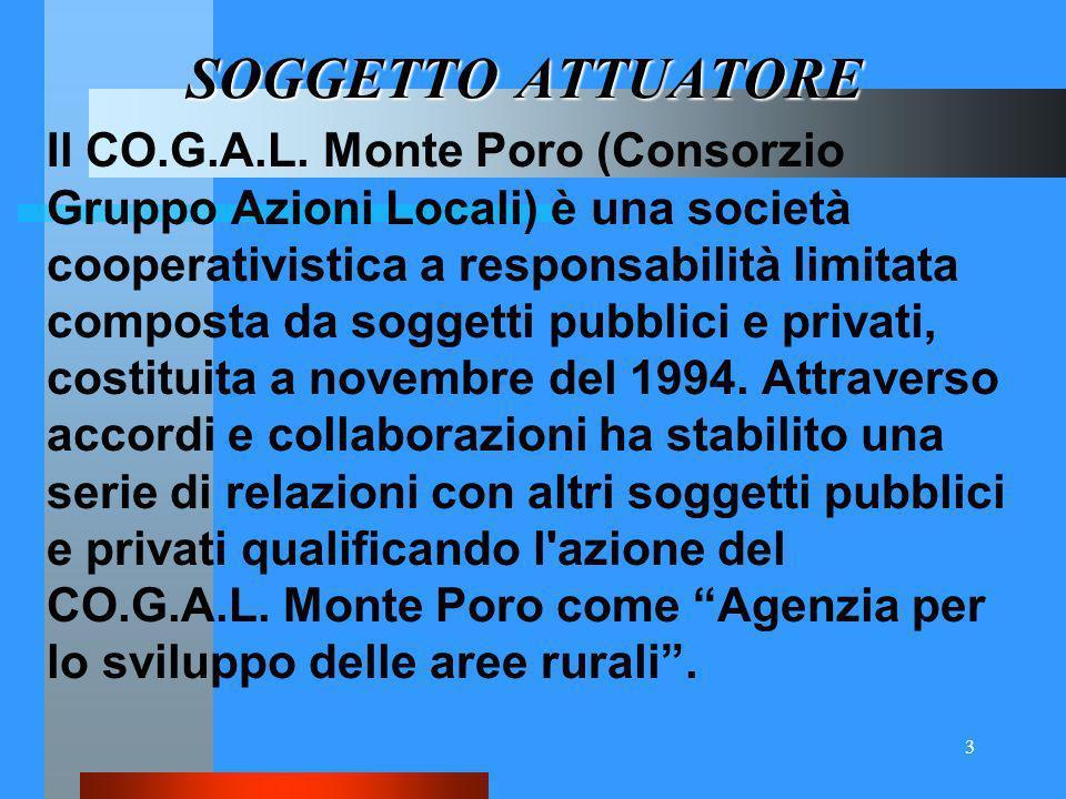 3 SOGGETTOATTUATORE SOGGETTO ATTUATORE Il CO.G.A.L.
