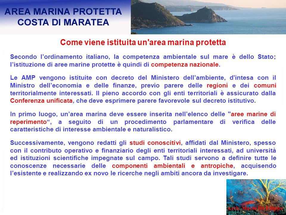 Come viene istituita un'area marina protetta Secondo lordinamento italiano, la competenza ambientale sul mare è dello Stato; listituzione di aree mari