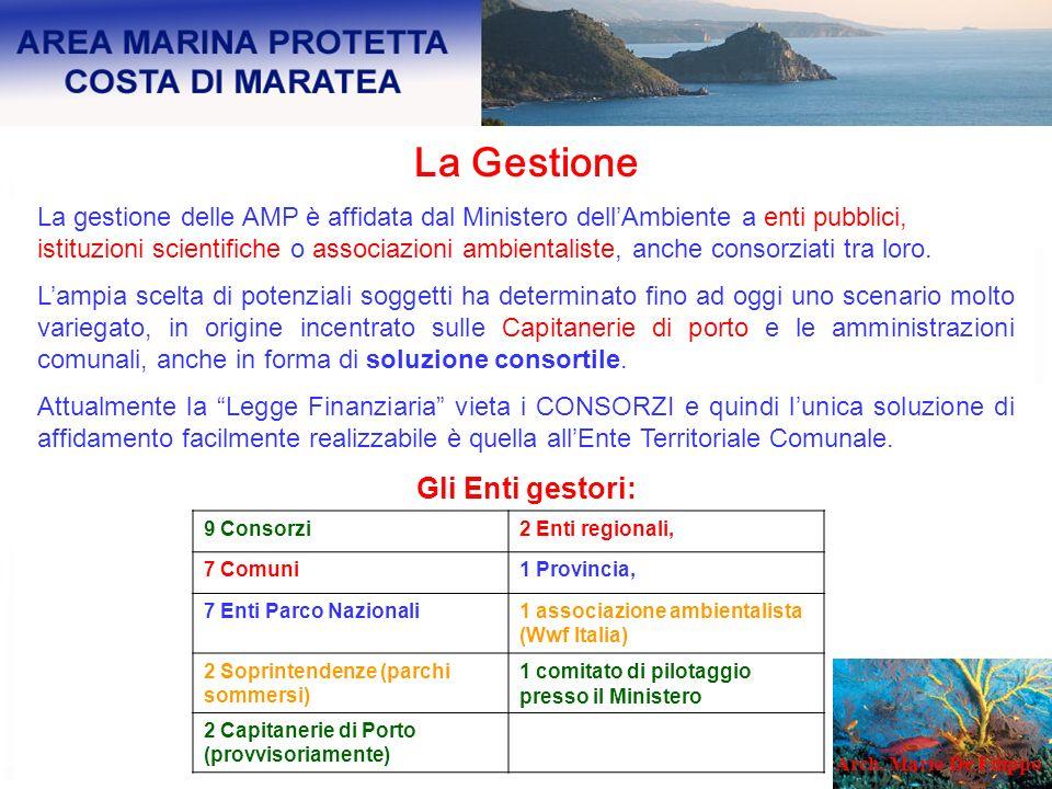 La Gestione La gestione delle AMP è affidata dal Ministero dellAmbiente a enti pubblici, istituzioni scientifiche o associazioni ambientaliste, anche