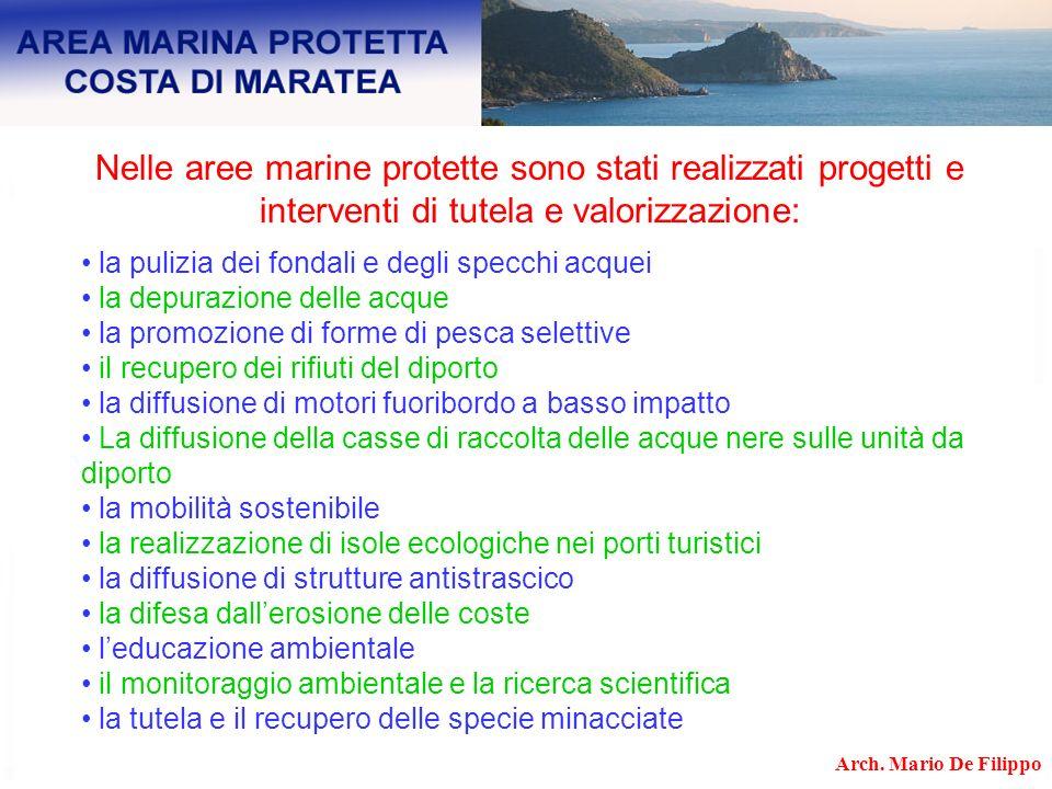 Nelle aree marine protette sono stati realizzati progetti e interventi di tutela e valorizzazione: la pulizia dei fondali e degli specchi acquei la de