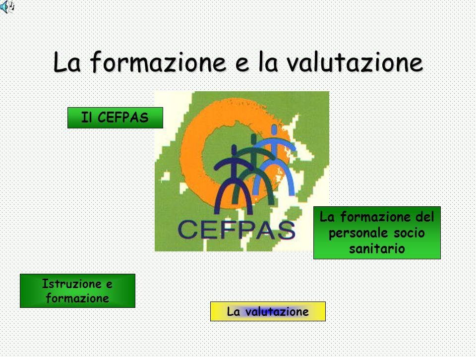 La formazione e la valutazione Istruzione e formazione Il CEFPAS La formazione del personale socio sanitario La valutazione