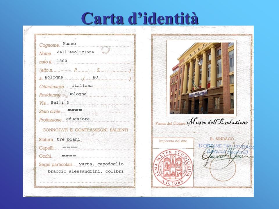 Cartadidentità Carta didentità