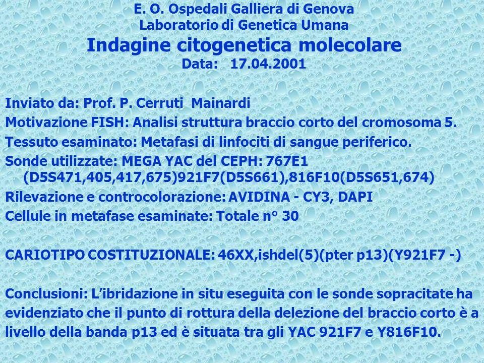 E. O. Ospedali Galliera di Genova Laboratorio di Genetica Umana Indagine citogenetica molecolare Data:17.04.2001 Inviato da: Prof. P. Cerruti Mainardi