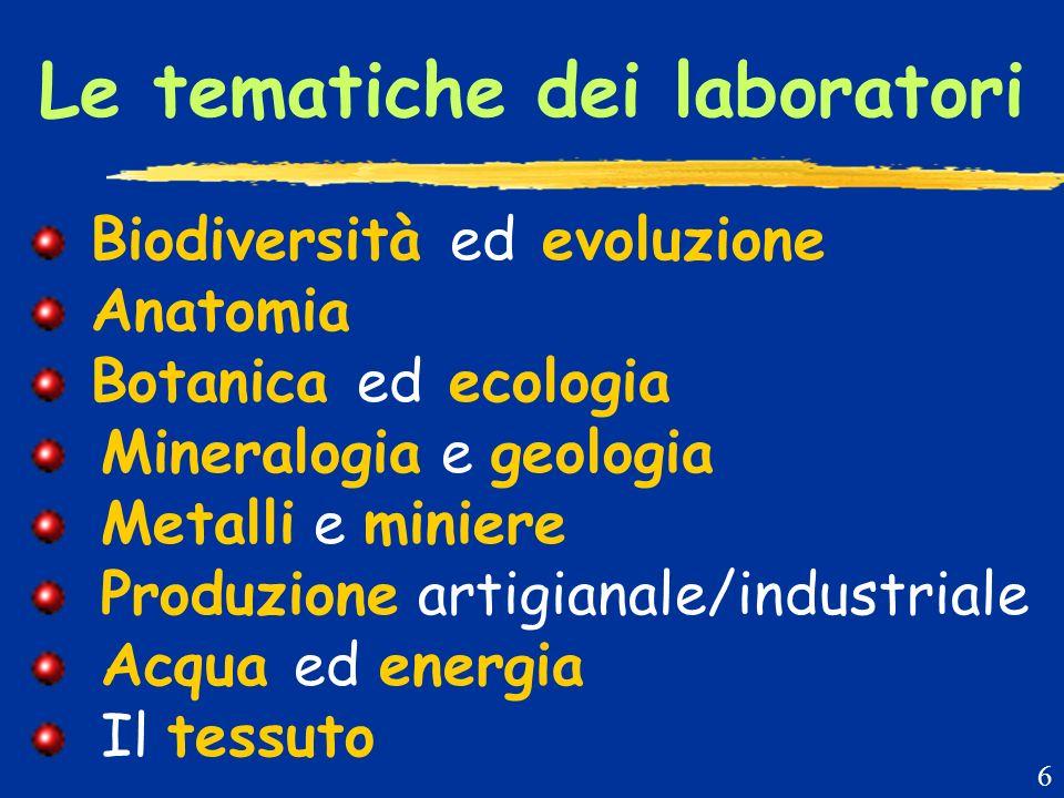 Le tematiche dei laboratori Biodiversità ed evoluzione Anatomia Botanica ed ecologia Mineralogia e geologia Metalli e miniere Produzione artigianale/industriale Acqua ed energia Il tessuto 6