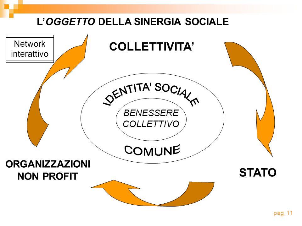 Network interattivo BENESSERE COLLETTIVO COLLETTIVITA ORGANIZZAZIONI NON PROFIT STATO LOGGETTO DELLA SINERGIA SOCIALE pag. 11