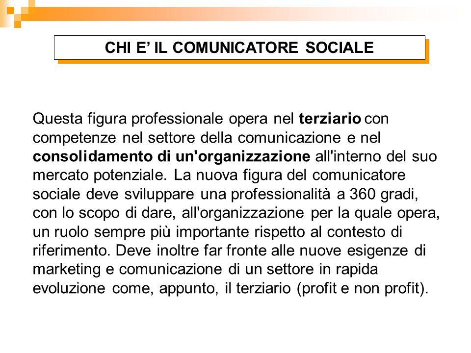 Questa figura professionale opera nel terziario con competenze nel settore della comunicazione e nel consolidamento di un'organizzazione all'interno d