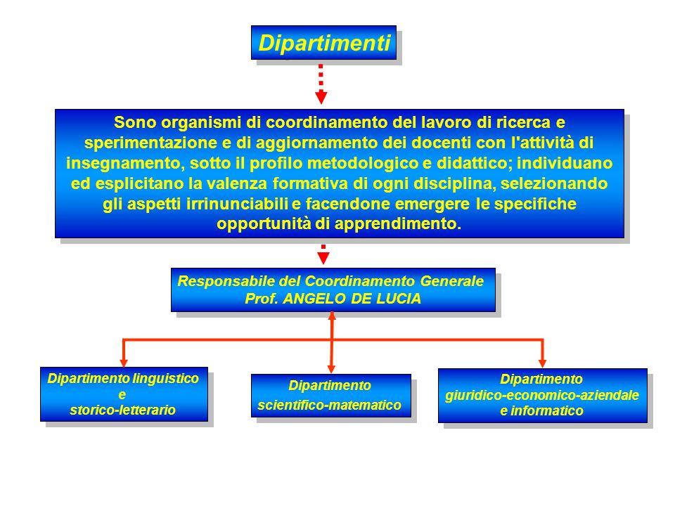 Per affrontare adeguatamente i suoi complessi impegni, il CD può operare attraverso dipartimenti, commissioni e gruppi di studio che predispongono i l