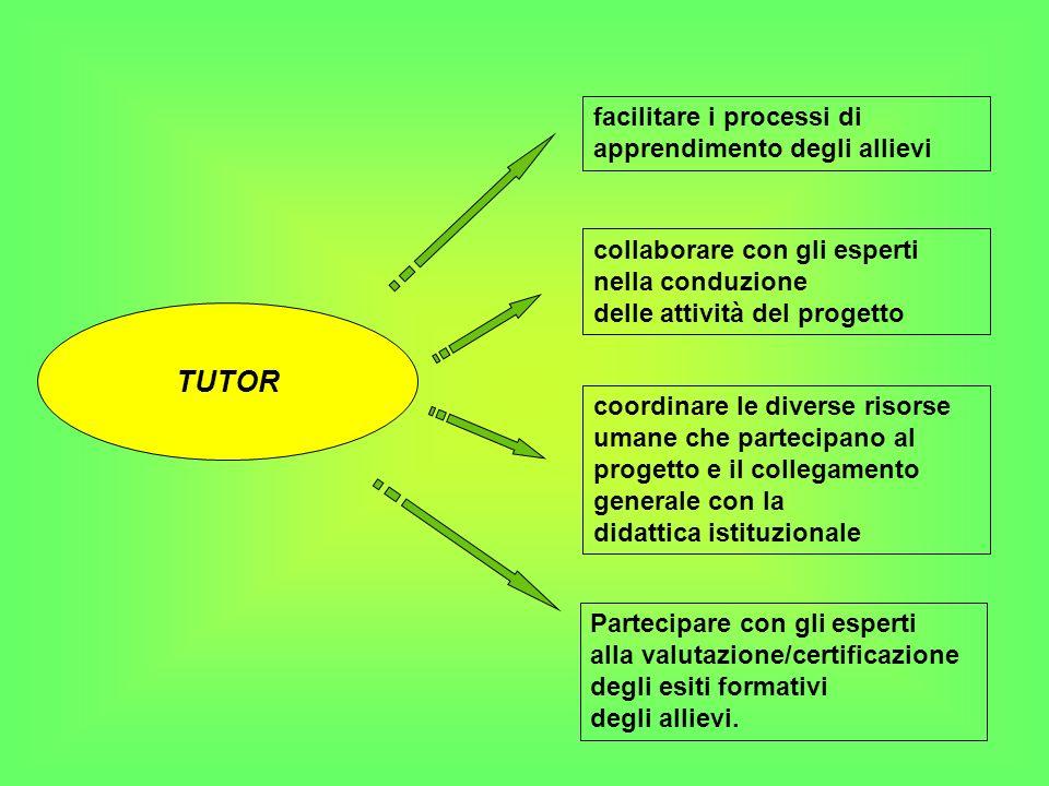 TUTOR coordinare le diverse risorse umane che partecipano al progetto e il collegamento generale con la didattica istituzionale Partecipare con gli es