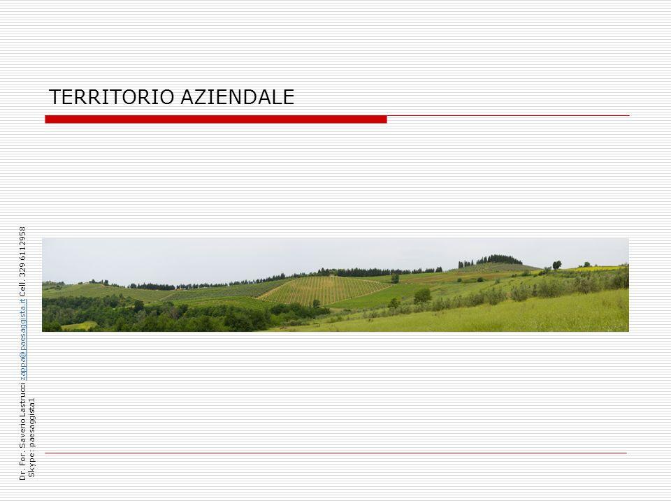 TERRITORIO AZIENDALE Dr. For. Saverio Lastrucci zappa@paesaggista.it Cell. 329 6112958 zappa@paesaggista.it Skype: paesaggista1