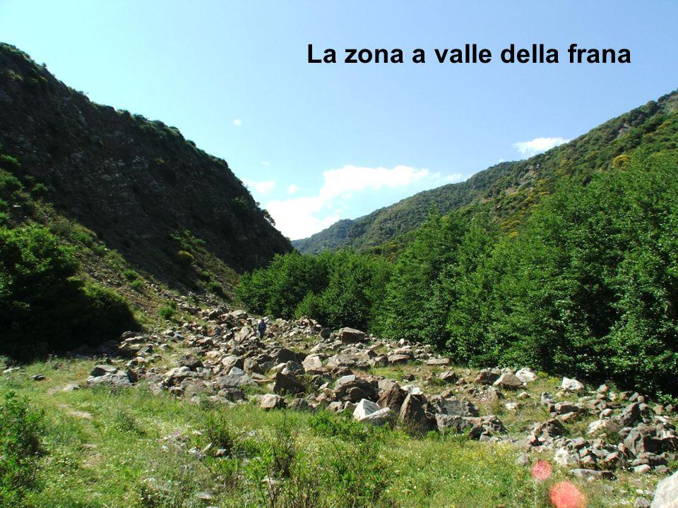 La zona a valle della frana