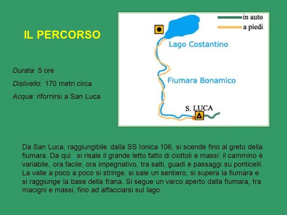Da San Luca, raggiungibile dalla SS Ionica 106, si scende fino al greto della fiumara. Da qui si risale il grande letto fatto di ciottoli e massi: il
