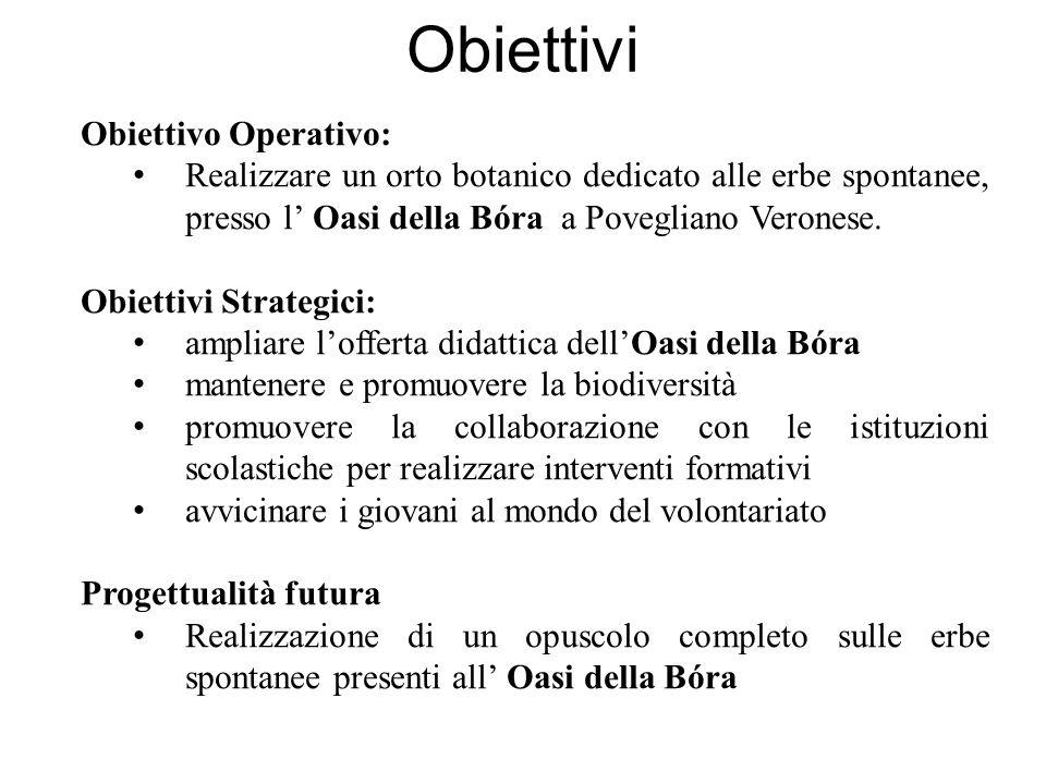 Obiettivi Obiettivo Operativo: Realizzare un orto botanico dedicato alle erbe spontanee, presso l Oasi della Bóra a Povegliano Veronese. Obiettivi Str