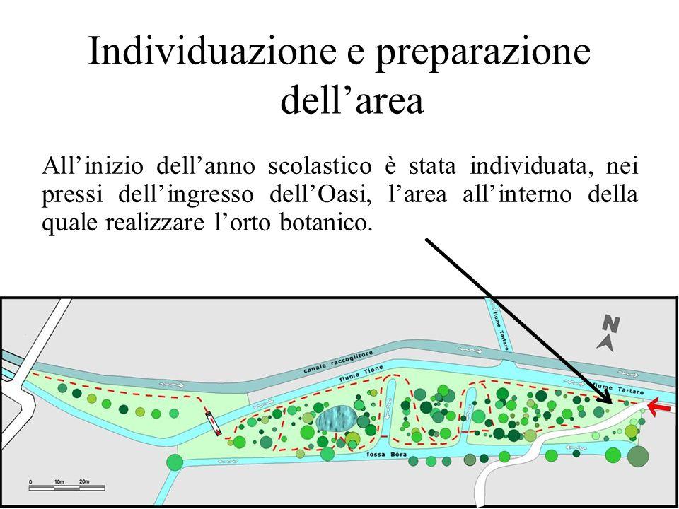 Individuazione e preparazione dellarea Allinizio dellanno scolastico è stata individuata, nei pressi dellingresso dellOasi, larea allinterno della qua