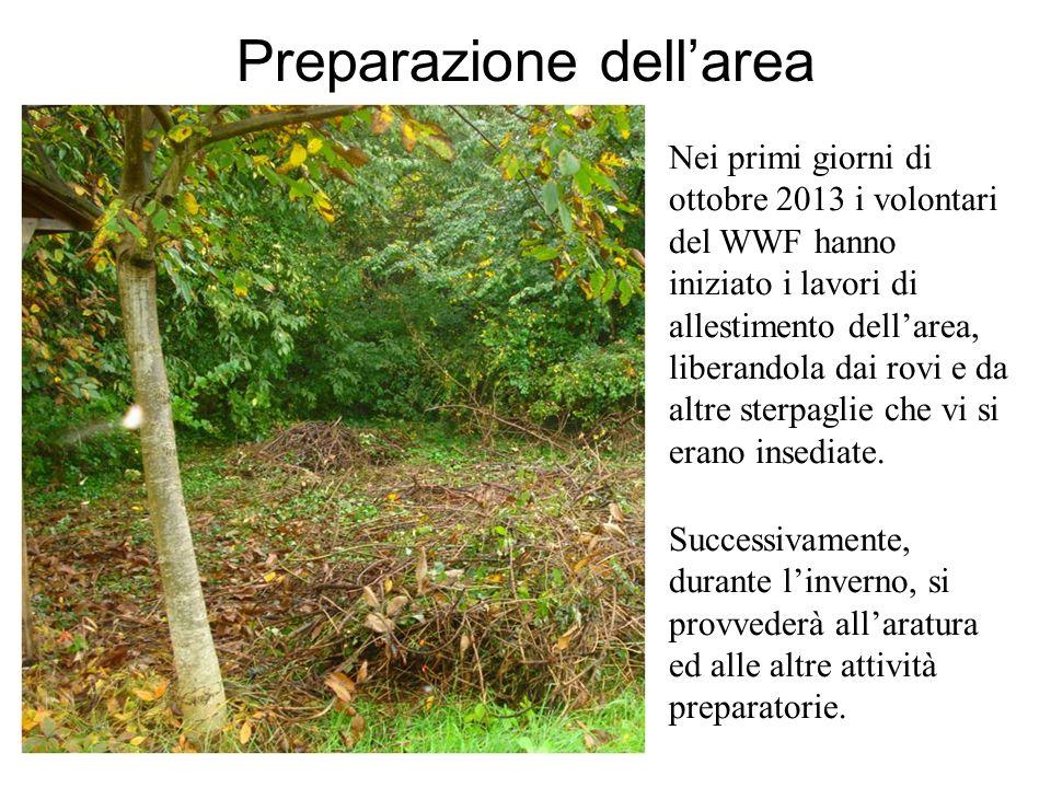 Preparazione dellarea Nei primi giorni di ottobre 2013 i volontari del WWF hanno iniziato i lavori di allestimento dellarea, liberandola dai rovi e da