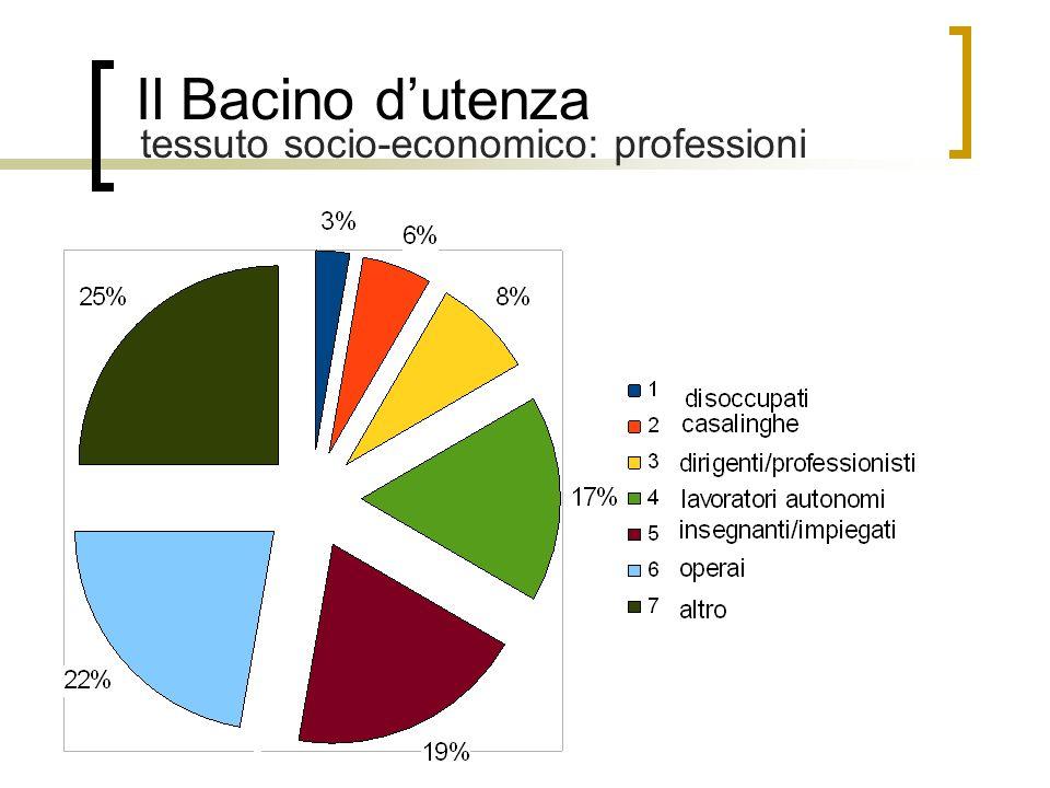 Il Bacino dutenza tessuto socio-economico: professioni