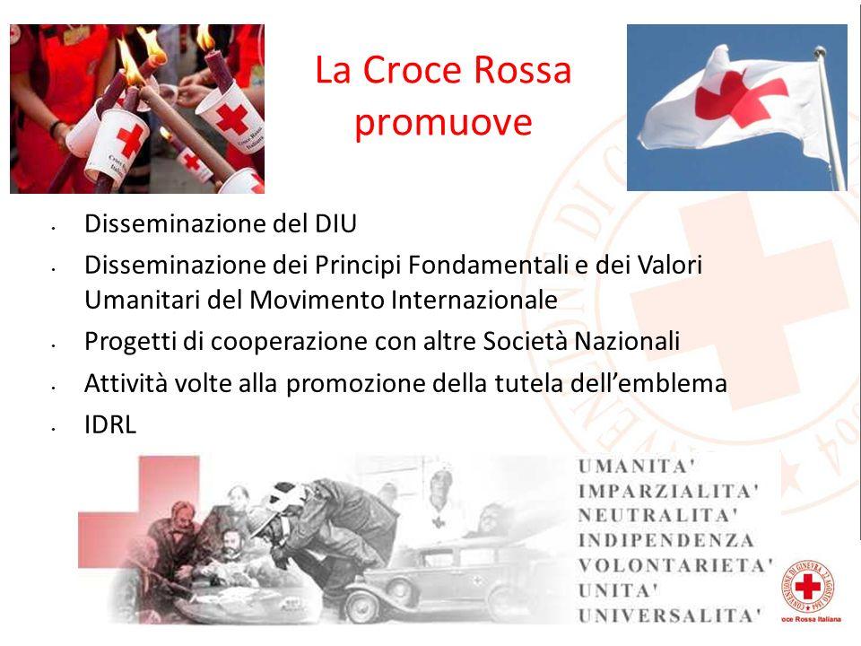 La Croce Rossa promuove Disseminazione del DIU Disseminazione dei Principi Fondamentali e dei Valori Umanitari del Movimento Internazionale Progetti d