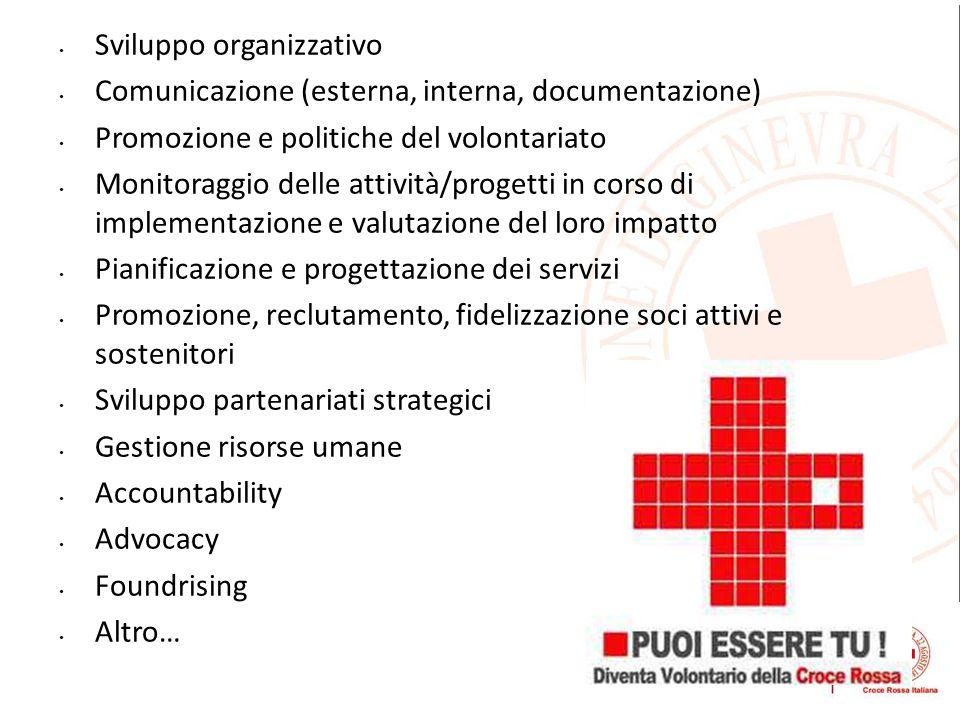 Sviluppo organizzativo Comunicazione (esterna, interna, documentazione) Promozione e politiche del volontariato Monitoraggio delle attività/progetti i