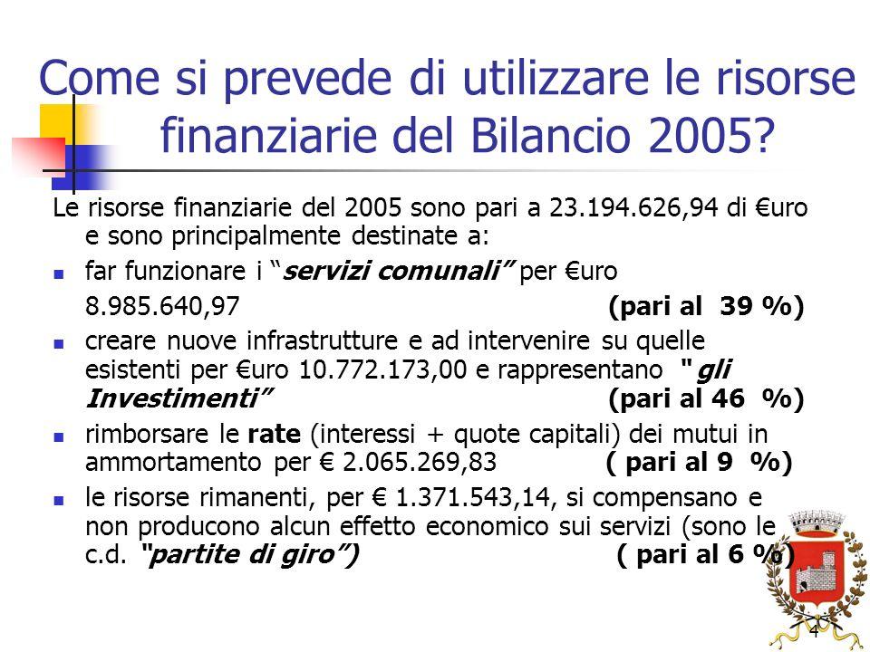 4 Come si prevede di utilizzare le risorse finanziarie del Bilancio 2005.