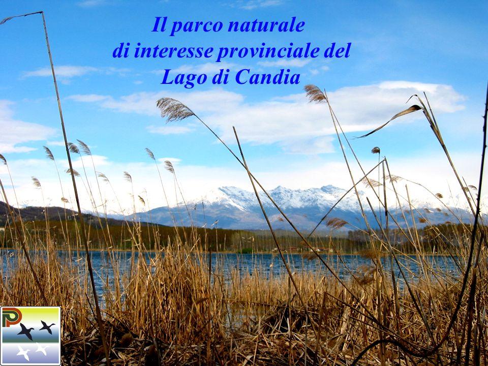 ENTE DI GESTIONE DEL PARCO NATURALE PROVINCIALE DEL LAGO DI CANDIA Il Parco naturale di interesse provinciale del Lago di Candia (L.R.