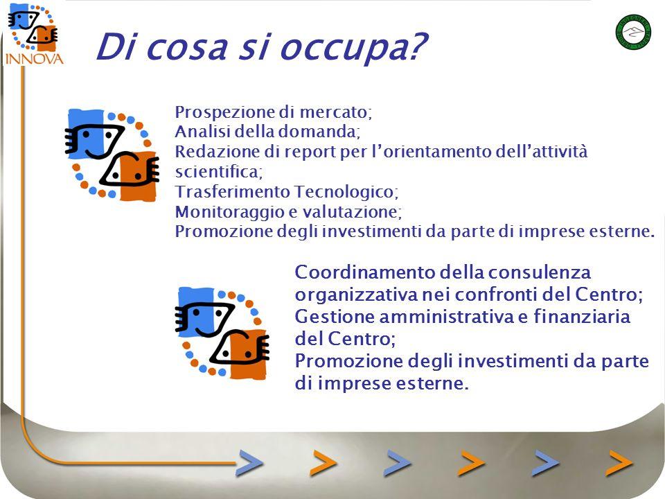 Prospezione di mercato; Analisi della domanda; Redazione di report per lorientamento dellattività scientifica; Trasferimento Tecnologico; Monitoraggio e valutazione; Promozione degli investimenti da parte di imprese esterne.