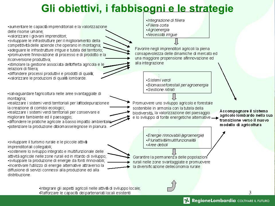3 Gli obiettivi, i fabbisogni e le strategie