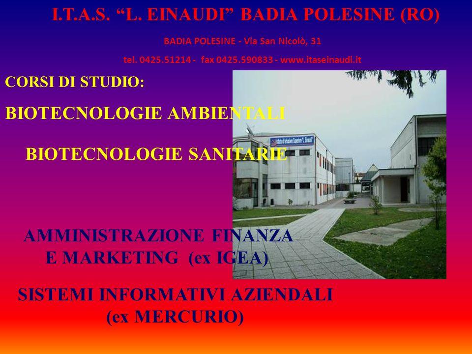 CORSI DI STUDIO: BIOTECNOLOGIE AMBIENTALI BIOTECNOLOGIE SANITARIE AMMINISTRAZIONE FINANZA E MARKETING (ex IGEA) SISTEMI INFORMATIVI AZIENDALI (ex MERC