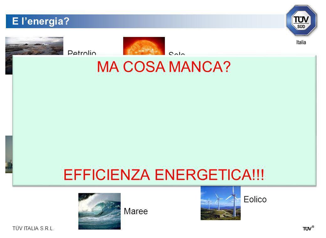 TÜV ITALIA S.R.L. Il Tema dello Sviluppo Sostenibile:Il ruolo delle risorse ambientali e naturali Le risorse ambientali e naturali assumono il ruolo d