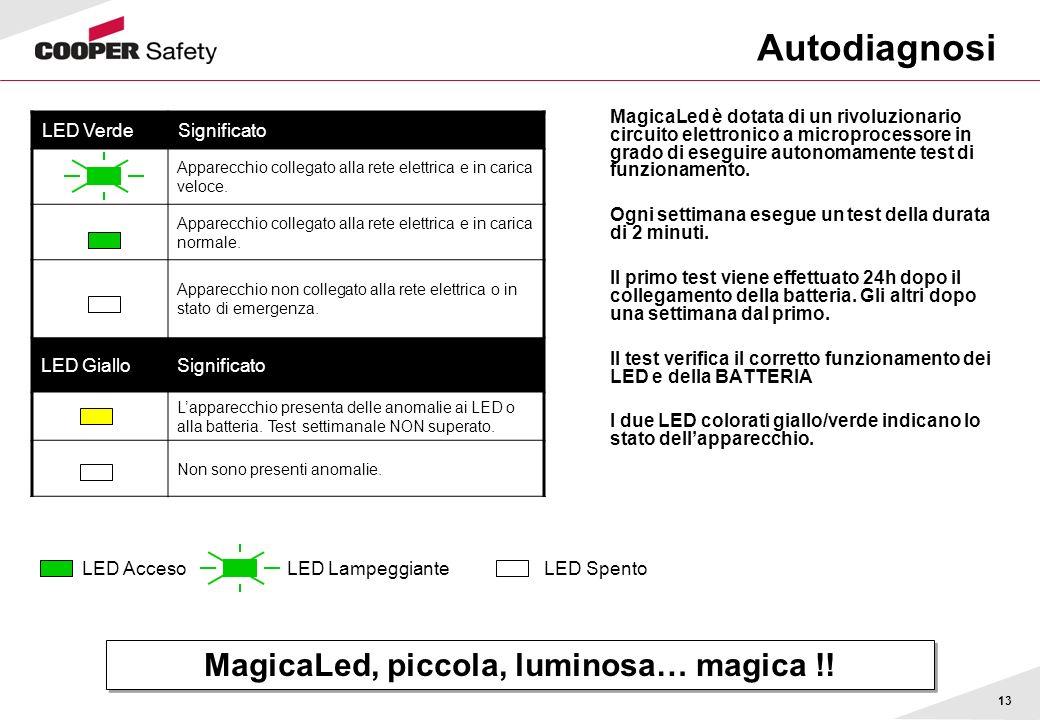 13 Autodiagnosi MagicaLed è dotata di un rivoluzionario circuito elettronico a microprocessore in grado di eseguire autonomamente test di funzionament